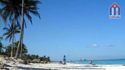 Varadero beach with palms